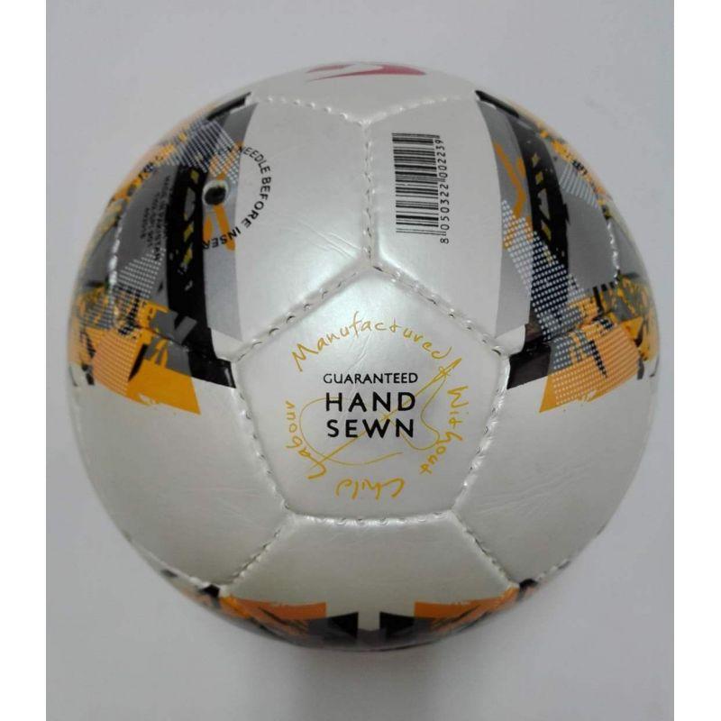 Futsalová lopta Gems Blade