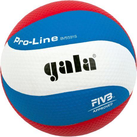 Gala Pro-Line 10 BV5591S